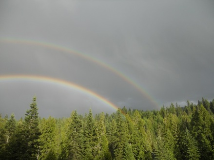 Rainbow at Ranch -small