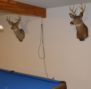 Our decor in the basement near the pool table.