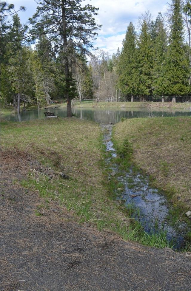 a-walk-along-my-creek-30.jpg