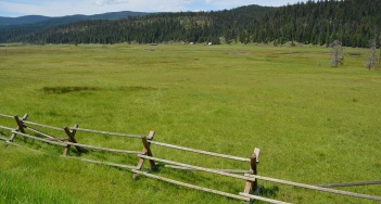 Meadows on the way to Red River Hot Springs