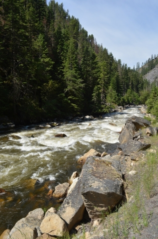 South Fork of the Clearwater River on the way to Elk City (3)