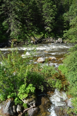 South Fork of the Clearwater River on the way to Elk City