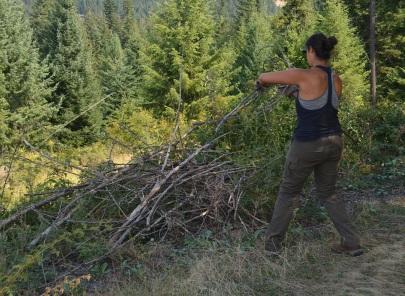 Emily builds a burn pile