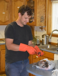 Alex begins the tedius work of plucking the feathers from a Grouse he shot on the property.