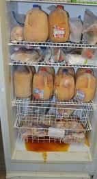 We sell apple cyder, eggs, and pork in season and its all VERY organic!