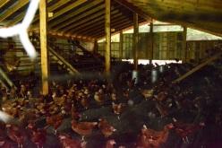 A regular chicken convention