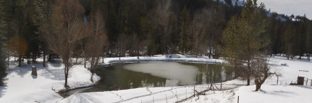 "Our lovely ""house pond"" in the winter."