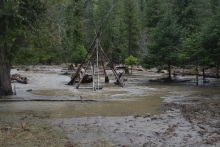 TP Flooded